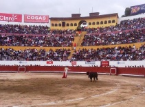 castella3